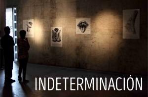 INDETERMINACION